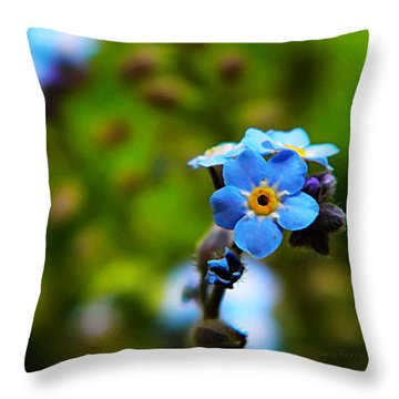 Forget Me Not Bloom Throw Pillow by Chris Berry