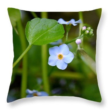 Forget Me Not Throw Pillow by John Chatterley