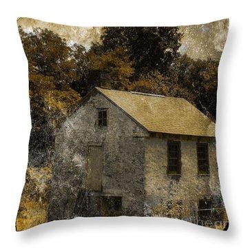 Forgotten Barn Throw Pillow by Marcia Lee Jones