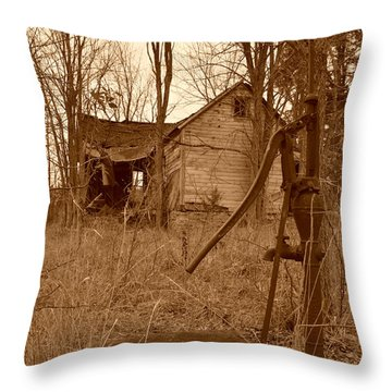 Forgotten Farmhouse Throw Pillow
