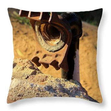 Forgotten Fire Hydrant Throw Pillow