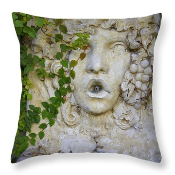 Forgotten Garden Throw Pillow by Laurie Perry