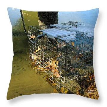 Forgotten In Winter Throw Pillow by Brian Wallace