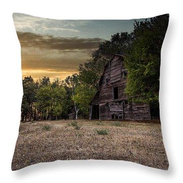 Forgotten Iv Throw Pillow