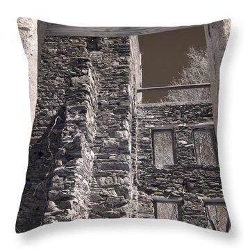 Forgotten Throw Pillow by Joann Vitali