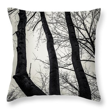 Forked Throw Pillow by Off The Beaten Path Photography - Andrew Alexander