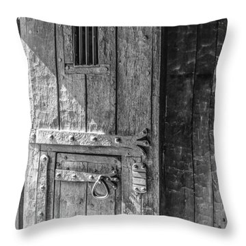 Fort Niagara Door Throw Pillow