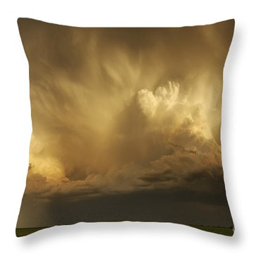 Forthcoming Calamity Throw Pillow