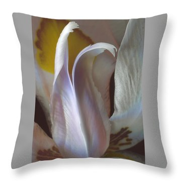 Fortnight Lily Composition No 3 Throw Pillow by Ben and Raisa Gertsberg