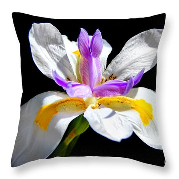Fortnight Lily Throw Pillow by Mariola Bitner