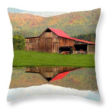 Fortunebarn Throw Pillow by Annlynn Ward