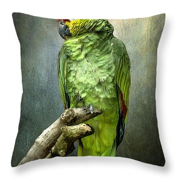 Throw Pillow featuring the photograph Forty Shades Of Green by Brian Tarr