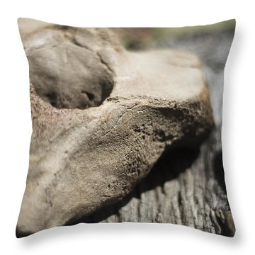 Throw Pillow featuring the photograph Fossil Bone With Weathered Wood by Rebecca Sherman