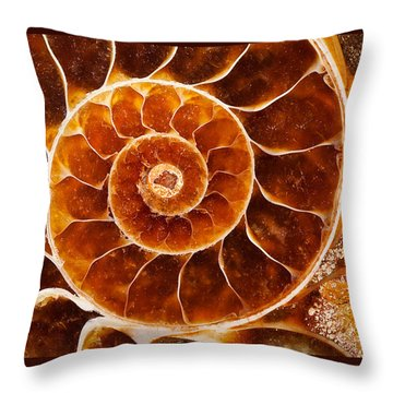 Fossil Nautilus Throw Pillow by Alice Cahill