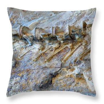 Fossilized Dinosaur Backbone - Dinosaur National National Monument Throw Pillow