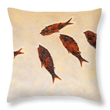 Fossilized Fishbritish Columbia Canada Throw Pillow by Thomas Kitchin & Victoria Hurst