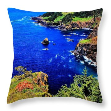 Foulweather Throw Pillow by Benjamin Yeager