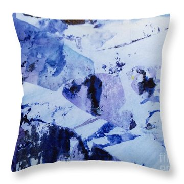 Found Snow Scene  Throw Pillow by Barbara Tibbets