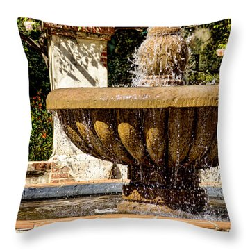 Throw Pillow featuring the photograph Fountain Of Beauty by Peggy Hughes