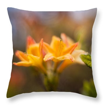 Fountain Of Gold Throw Pillow by Mike Reid