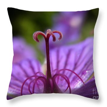 Fountain Of Joy Throw Pillow