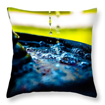 Fountain Of Time Throw Pillow