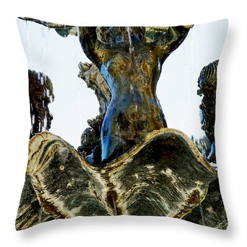 Fountain Of Youth II Throw Pillow