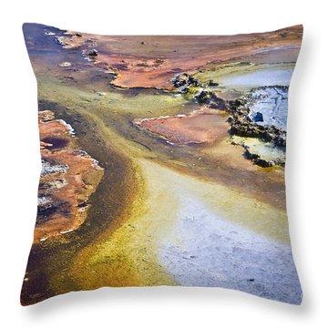 Fountain Paint Pot Throw Pillow