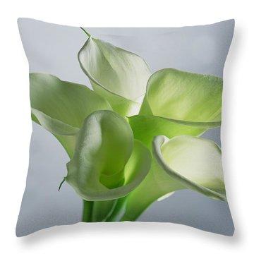 Lithography Throw Pillows