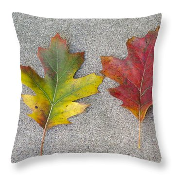 Four Autumn Leaves Throw Pillow
