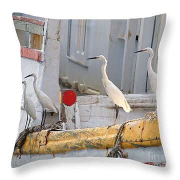 Four Egrets Watch For Fish Throw Pillow