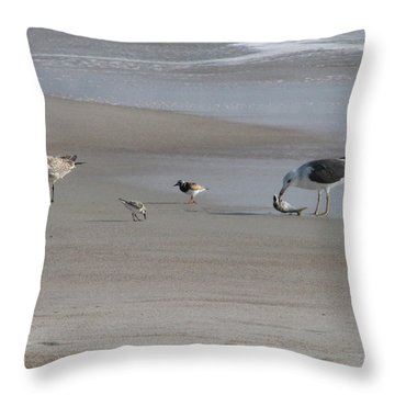 Four Feathers And A Fish Throw Pillow by Ellen Meakin