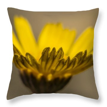 Four-nerve Daisy Throw Pillow