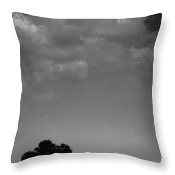 Throw Pillow featuring the photograph Four Palms by Bradley R Youngberg