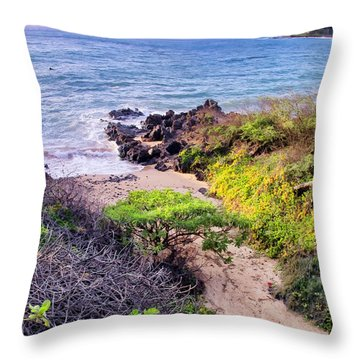 Four Seasons 125 Throw Pillow