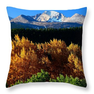 Four Seasons Throw Pillow by Steven Reed