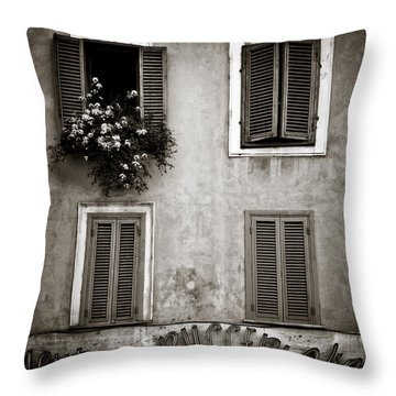Four Windows Throw Pillow by Dave Bowman