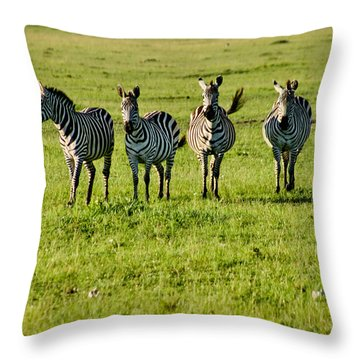 Four Zebras Throw Pillow