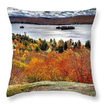 Fourth Lake From Above Throw Pillow