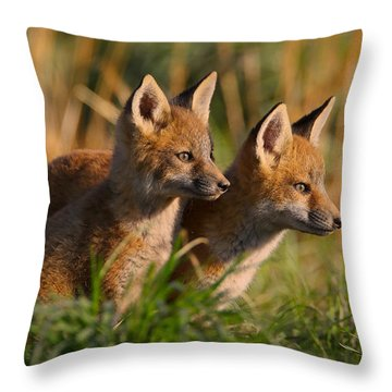 Fox Cubs At Sunrise Throw Pillow