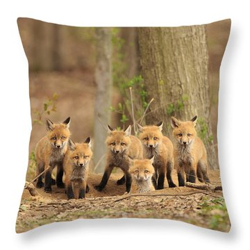 Fox Family Portrait Throw Pillow