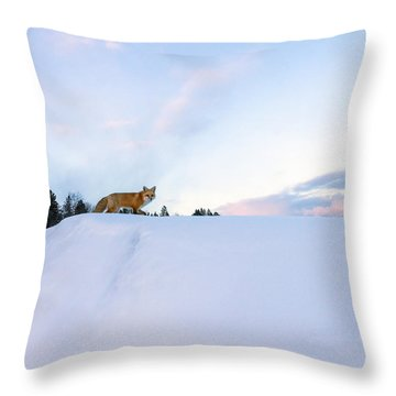 Fox Of The North IIi Throw Pillow by Mary Amerman