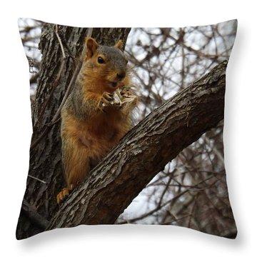 Fox Squirrel 1 Throw Pillow by Sara  Raber