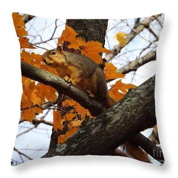 Fox Squirrel In Autumn Throw Pillow by Sara  Raber