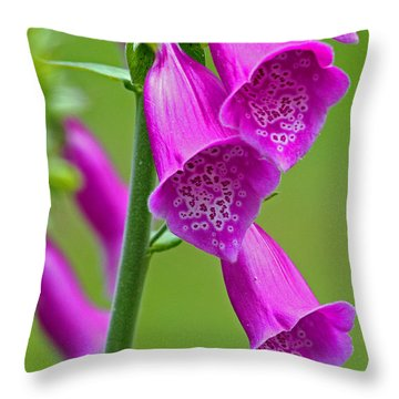 Foxglove Digitalis Purpurea Throw Pillow