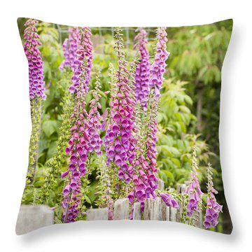 Foxglove Fence Throw Pillow by Anne Gilbert