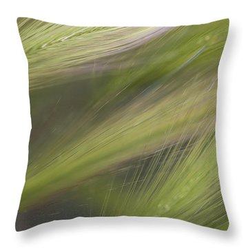 Foxtail Fans Throw Pillow