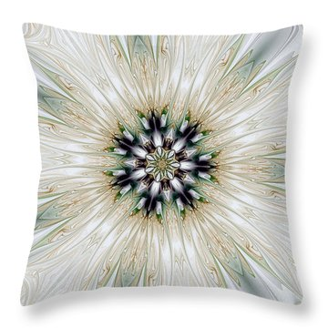 Fractal Desires Kaleidoscope Throw Pillow