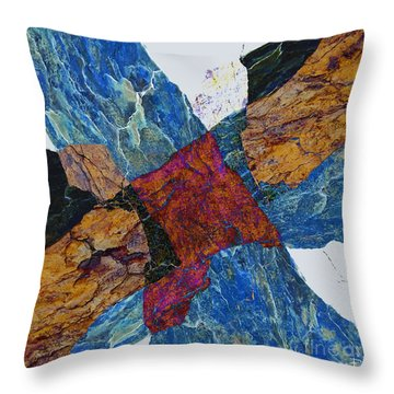 Fracture Section X Throw Pillow