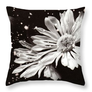 Fractured Daisy Throw Pillow
